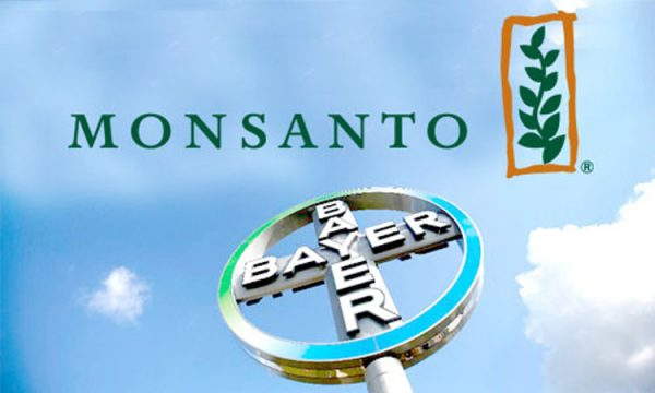 monsanto_bayer